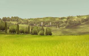 Screenshot2 - Agrar Simulator 2013 download